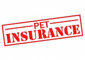 PET INSURANCE red Rubber Stamp over a white background. poster