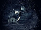 Dark and scary Haunted Mansion with owl in flight at full moon poster