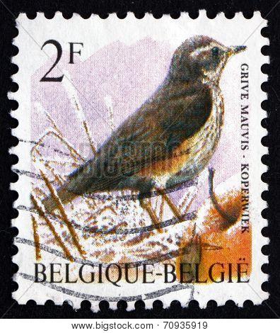 Postage Stamp Belgium 1992 Redwing, Bird