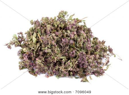 Heap Of Dried Marjoram