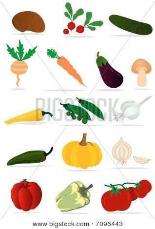 Set of detailed vegetables on white background