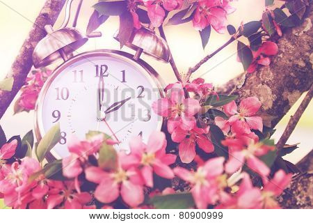 Springtime Daylight Savings Time