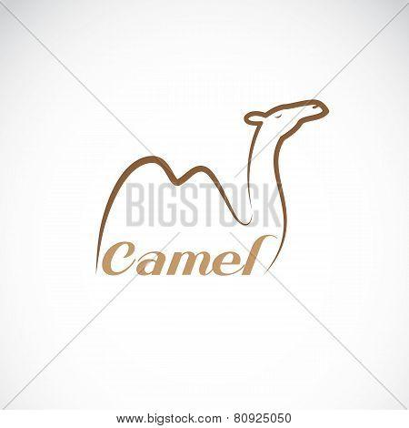Vector Image Of An Camel Design