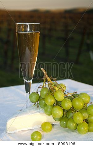 Flute of Sparkling Wine at Sunset in a Vineyard
