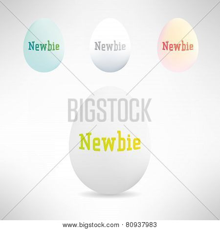 Realistic egg with newbie text on it. Vector