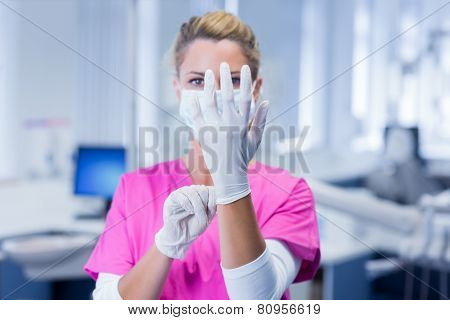 Dentist in pink scrubs putting on surgical gloves at the dental clinic poster