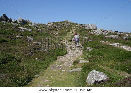 Walker on the slope.
