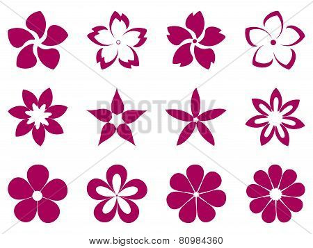 Unusual flowers vector set