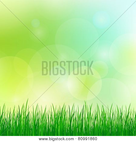 summer background with green grass. eps10