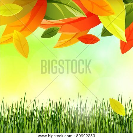 autumn background with leaves and grass. eps10