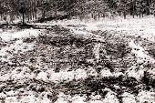 tracks after a tractor on mud and snow poster