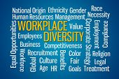 Workplace Diversity word cloud on Blue Background poster