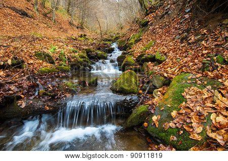 Autumn Orange Waterfall
