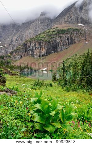 Landscape View Of Alpine Meadow, Lake And Mountains