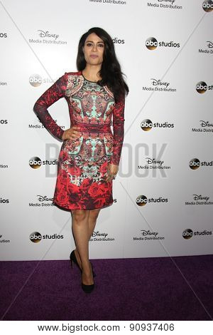 LOS ANGELES - MAY 17:  Yasmine Al Massri at the ABC International Upfronts 2015 at the Disney Studios on May 17, 2015 in Burbank, CA