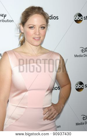 LOS ANGELES - MAY 17:  Erika Christensen at the ABC International Upfronts 2015 at the Disney Studios on May 17, 2015 in Burbank, CA