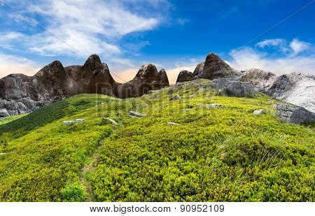 composite landscape with path through hillside meadow with white sharp boulders near cgi mountain peaks poster