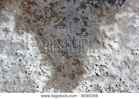 Salt Macro Detail Texture In Saltworks