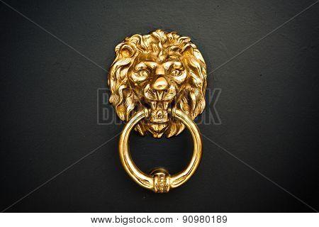 Golden Lion At The Door