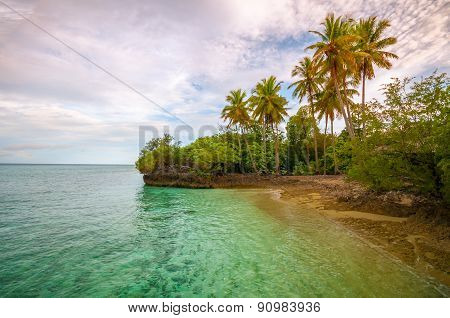 Tropical Island Before Sunset With Palm Trees