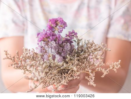 Hand On Beautiful Dried Flower