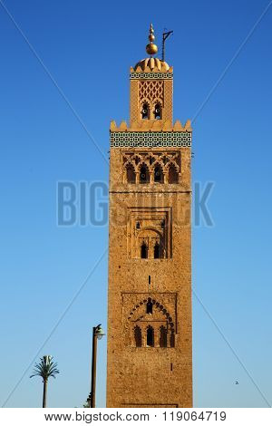 in maroc africa minaret and the blue sky poster
