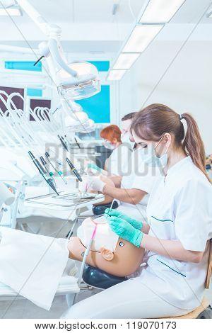 Dentist Career Awaits For Her!