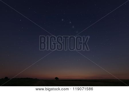 Starry night, Beautiful Star at sunset Field with Constellations Ursa major, Leo minor, Leo, Draco B