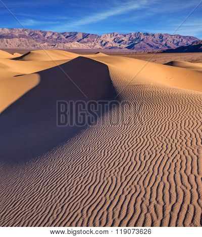 Mesquite Flat Sand Dunes. Bright solar morning in picturesque part of Death Valley. Slopes of sandy barkhans shine orange light. Deep shadows in flat hollows