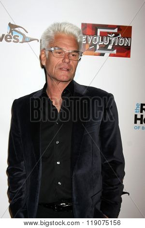 LOS ANGELES - DEC 3:  Harry Hamlin at The Real Housewives of Beverly Hills Premiere Red Carpet 2015 at the W Hotel Hollywood on December 3, 2015 in Los Angeles, CA
