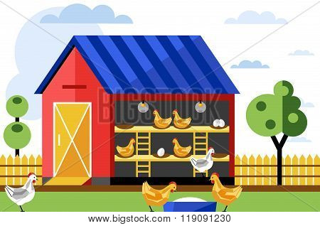 Poultry farm. Poultry processing. Chicken farm. Poultry. Poultry farm infographics. From chicken farm to the store. Poultry illustration. Poultry vector. Egg production. Egg farm.