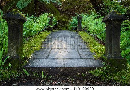 Small bridge in the Terra Nostra Garden