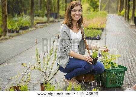 Beauitful female customer choosing plants in a greenhouse