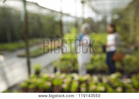 Bluriing view of a greenhouse and a florist and the customer