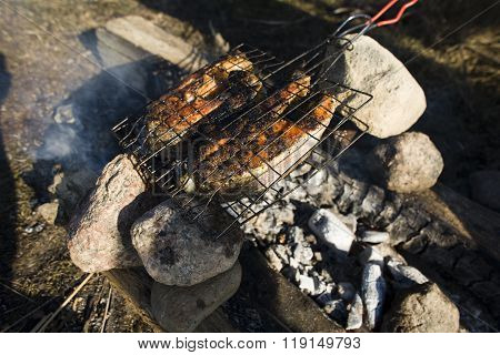 salmon fish cooked on bbq grilled, resting weekend concept