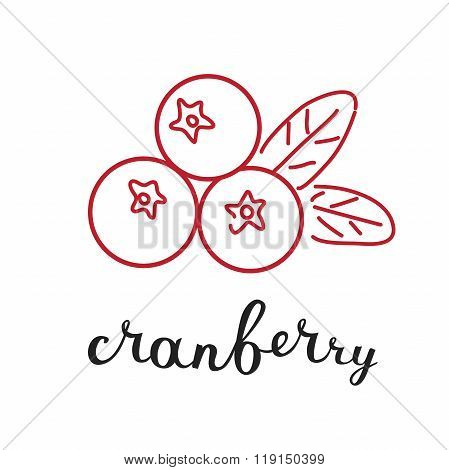 Cranberry and hand writing lettering name