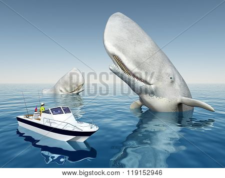 Sea angler and sperm whales