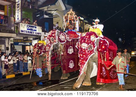 Elephant Riders Participates The Festival Pera Hera In Kandy