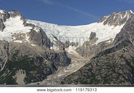 Alpine Glacier Heading To The Ocean