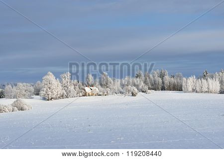 Winter Landscape With Cozy Farm Houses And Snowcovered Trees