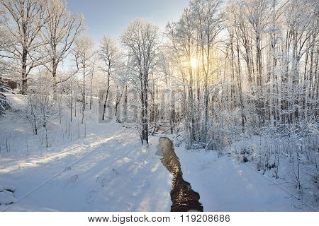 Small Forest Stream Surrounded By Snowcovered Trees During Winter Sunset