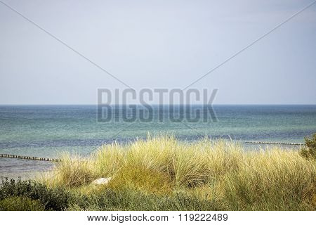 Ocean Landscape With Dune And Marram Grass