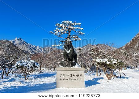 Seoraksan National Park in winter Location on Gangwon South Korea.