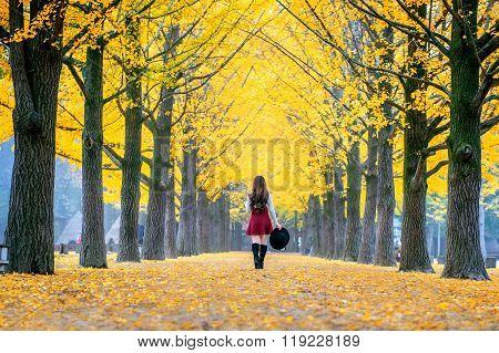Beautiful Girl With Yellow Leaves In Nami Island, Korea