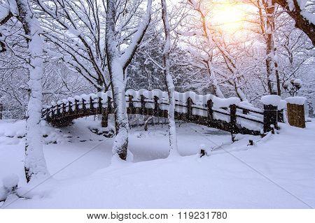 Snow Falling In Park And A Walking Bridge In Winter, Winter Landscape.