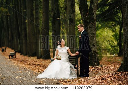The Bride And Groom Sitting On Bench In Autumn Park