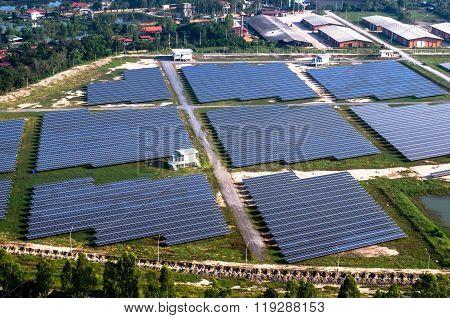 Solar farm solar panels