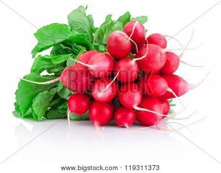 Fresh Red Radish Isolated On A White Background