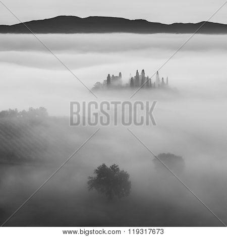 B/w Landscape With Fog