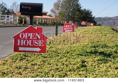 Open House Signs in a row along a rural street.